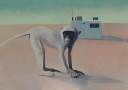 Monkey House - 100 x 150 Cm