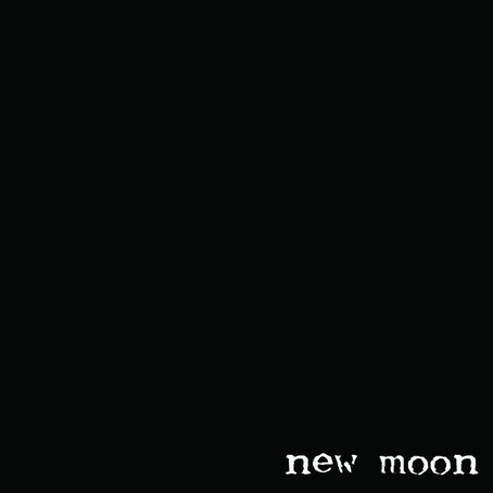 "New single, ""New Moon"", is out"