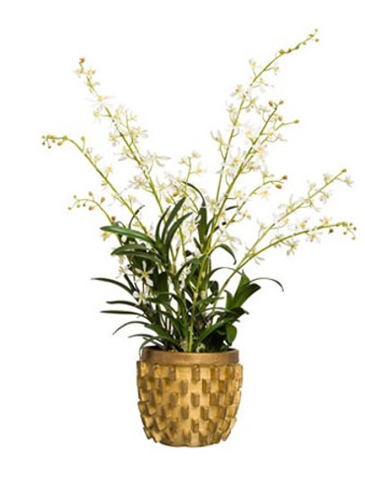 White Faux Floral in Gold Vase