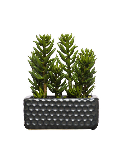 Faux Succulent in Black Small Honeycomb Planter