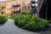 kantoren Tomorrowland (24).jpg