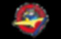 Flying Vikings Logo