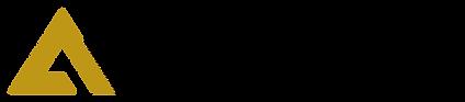 TheAccelerationGroup-Logo copy.png