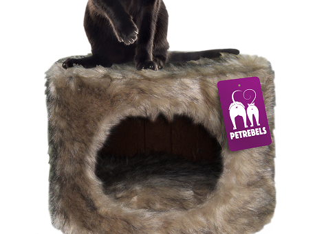 Petrebels Kings & Queens Victoria 45 Cat House