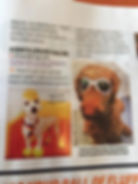 A Dog's Life Pet Salon featured in Cosmopolitan Magazine