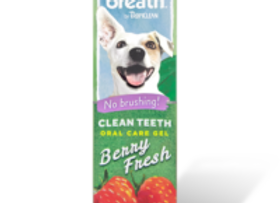 Oral Care Spray (Berry Fresh Flavoured)