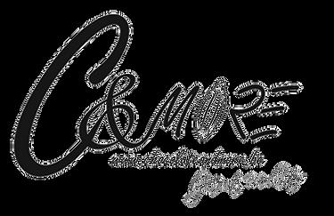 LogoZwartWitTransparant.png