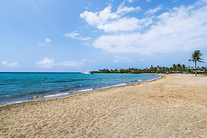 hawaii beach - Anaehoomalu Beach.jpg