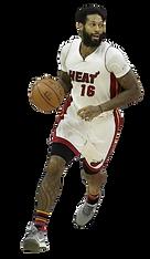 James Johnson plays for Miami Heat