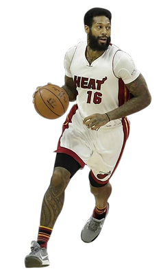 James Johnson plays for Miami Heat