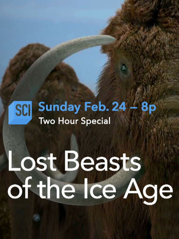 TV 2 Hour special. Includes 20 minutes of computed generated Mammoths, CG Whooly Rhinos, and CG Wolf + transitions and motion graphics.