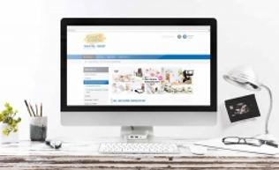 Homepage - Shop_Mini.jpg