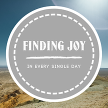 small_Finding_Joy__1_.png