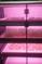 """Вебинар """"Особенности выращивания микрозелени  в Greenbar"""""""