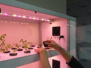 Лаборатория БИОПОНИQ  в «Проектном офисе развития Арктики»! Осваиваем профессию «Ситифермер» для сев