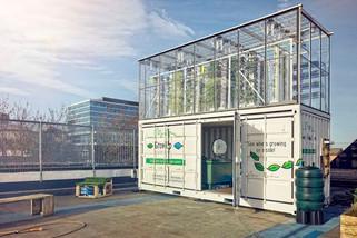 Фонд Vision Manager инвестировал $200 млн в стартап Plenty, который выращивает зелень в вертикальных