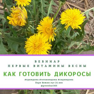 ВЕБИНАР: Готовим дикоросы: наступила весна и во дворе появляется вкуснятина!