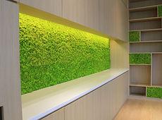 moss-panels5-720x533.jpg