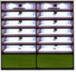 витрина 6-2.jpg