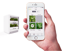plantcube-smart-controls-urbangardensweb