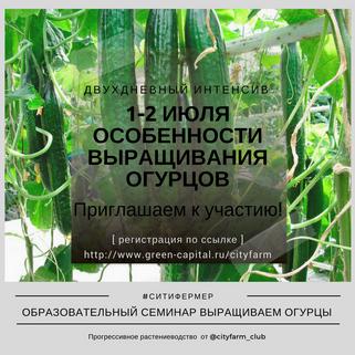 Двухдневный интенсив: Промышленное выращивание огурцов