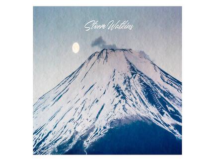 Storm Watkins - Good Vibrations Only (Instrumental Album)