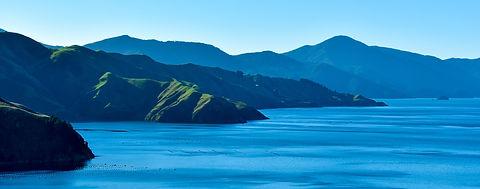 NZ waters.jpg