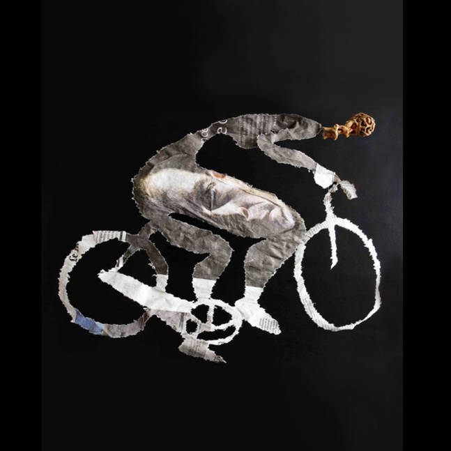 Cycluistre