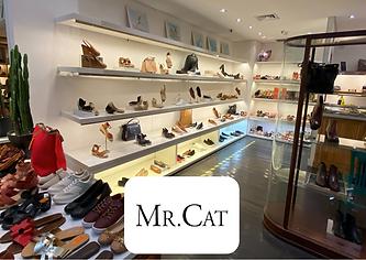mrcat cliente trendmarket.com.br .png