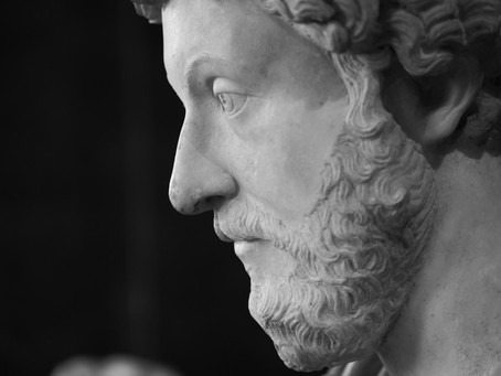 Truth & Beauty: A Stoic Approach to Balance