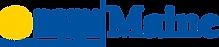 NAMI logo.png