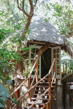 Mahayana Treehouse