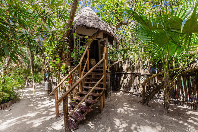 Mahayana Eclectic Treehouse