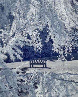 come-sit-a-while-1024x678.jpg