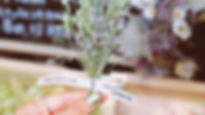 tumblr_static_tumblr_static__640.jpg