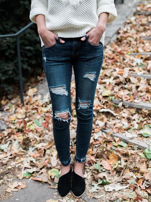 Cameron Gradient skinny Jeans