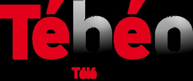 Tébéo - Ronan LOUP réalisateur vidéo