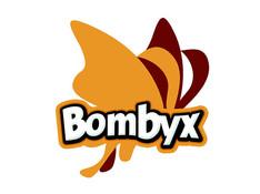 Bombyx - Ronan LOUP réalisateur vidéo
