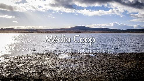 Média coop réseau audiovisuel chrysalide cae 29