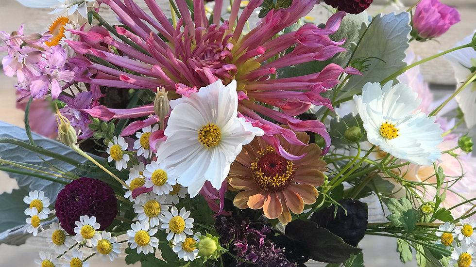 6-Week Fresh Flower CSA Subscription