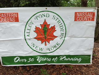 Alley Pond Striders Picnic