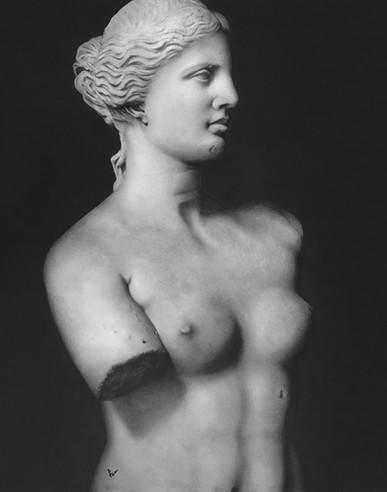 Desenho Venus.jpg