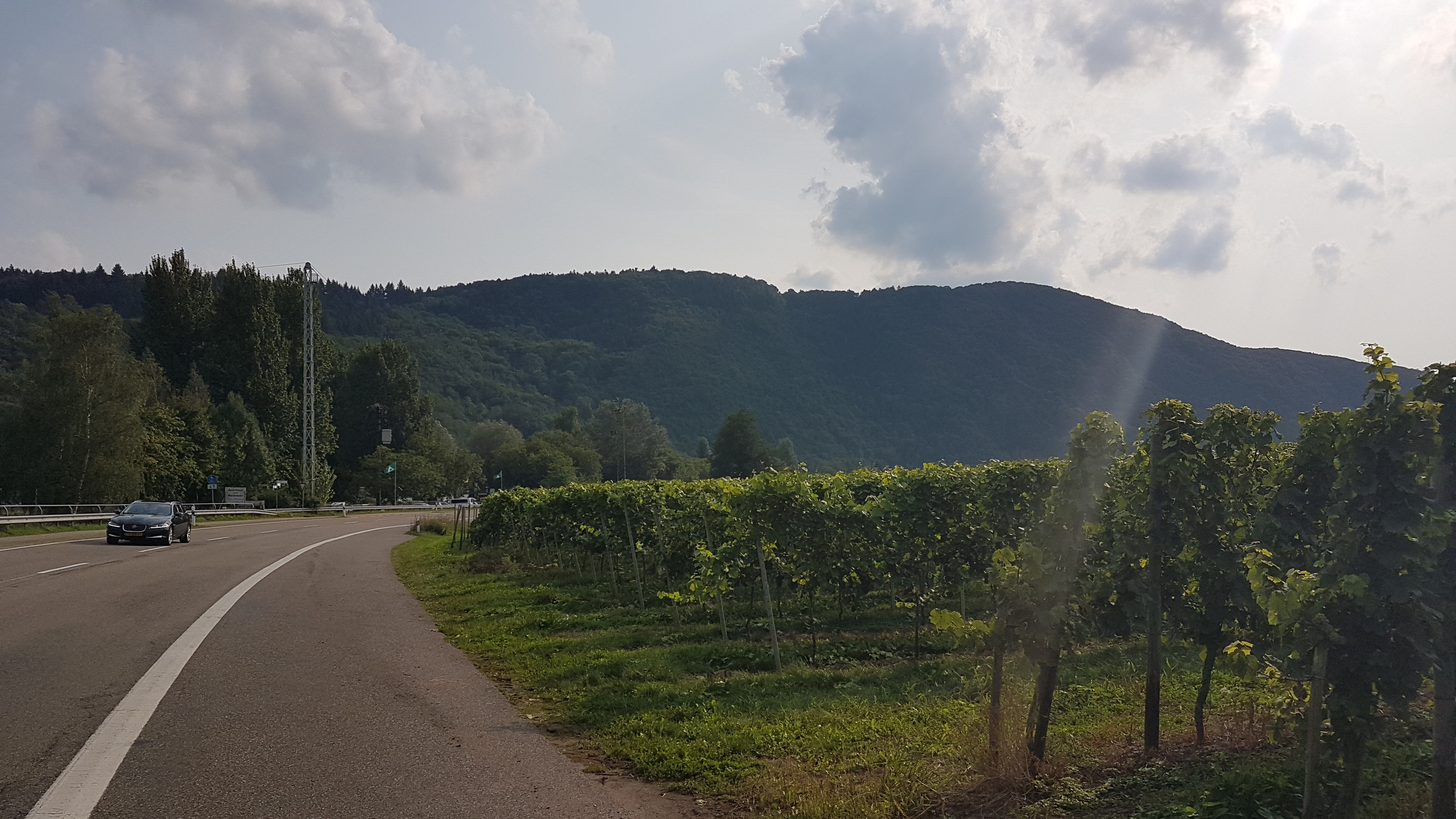 German wine region