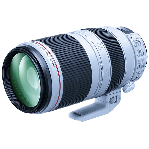 Canon 100-400mm L IS II series