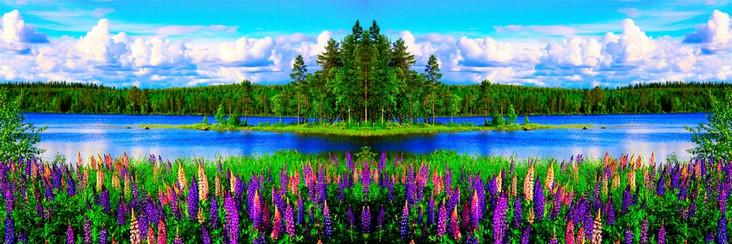 31_File_43201536_.jpg