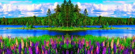 21_File_43201536_MA.jpg