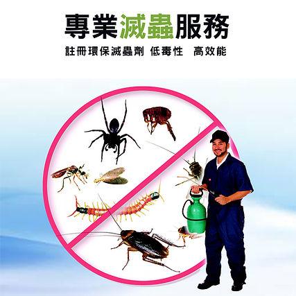 Main-pest-control-square.jpg
