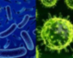 病毒及細菌