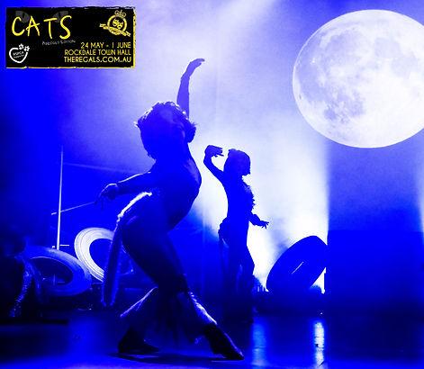 Regals_CATS-AE_2019_Lilli-Waugh- sticker