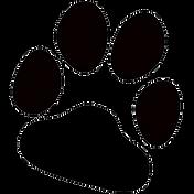 cat-paw-print-transparent-png-stickpng-c